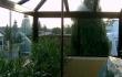 Wintergarten56